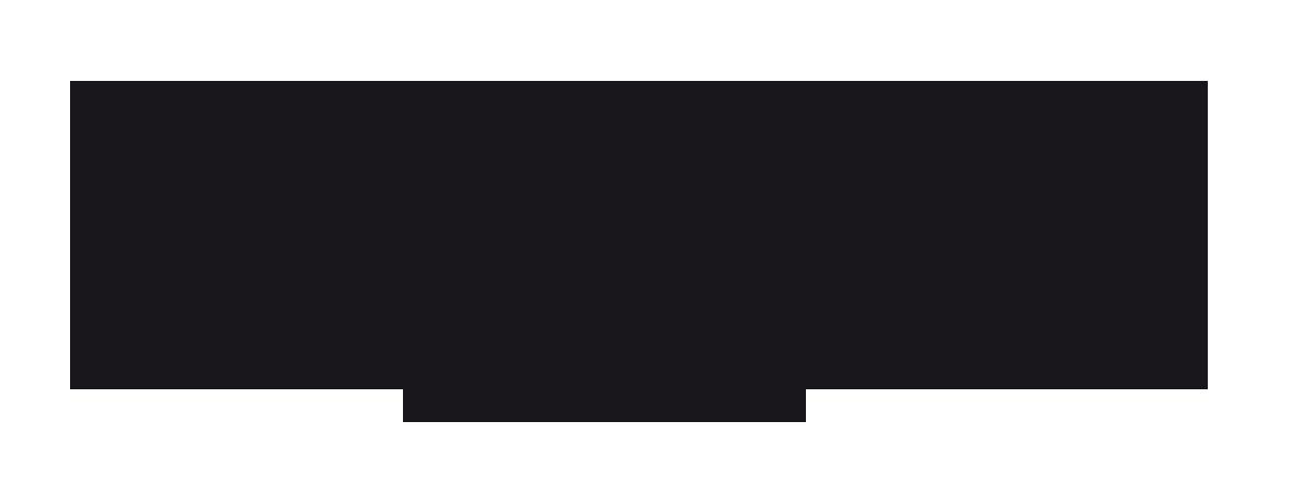 Blumarine Eyewear Logo